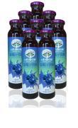 美森庄园 野生蓝莓汁饮料礼盒300ml*8 果汁饮料